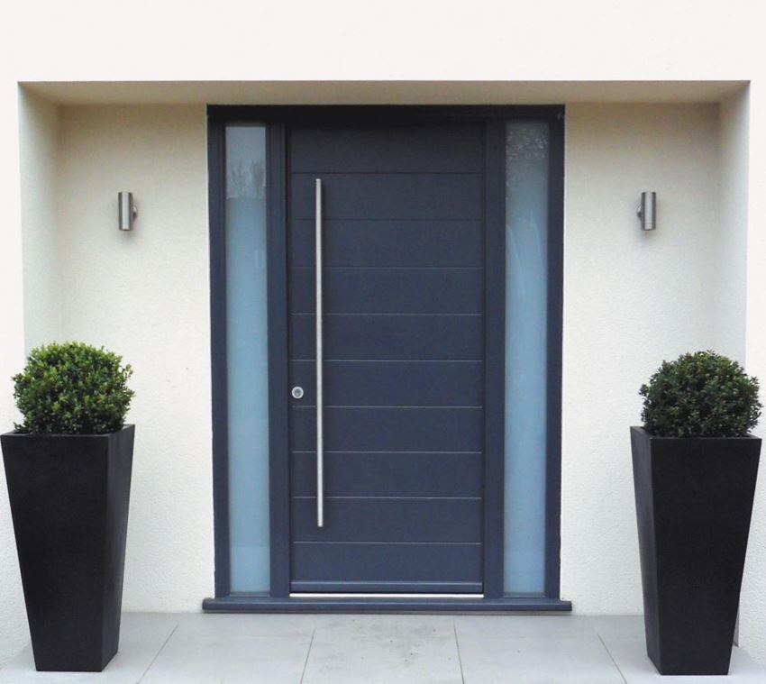 Modern planers on either side of a front door