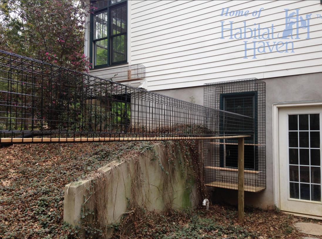 Outdoor enclosed cat walkway