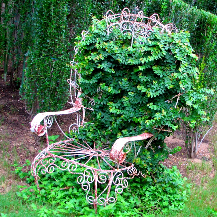 Even when ivy and wrought iron chair have become one, it still looks great
