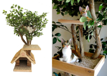 PetTreeHouse for Cats