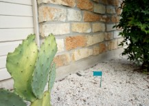 Rock-gardens-require-regular-maintenance-217x155