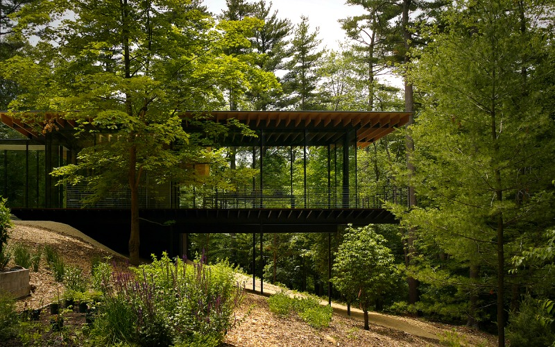 This part of the house looks almost as if it is floating in the forest