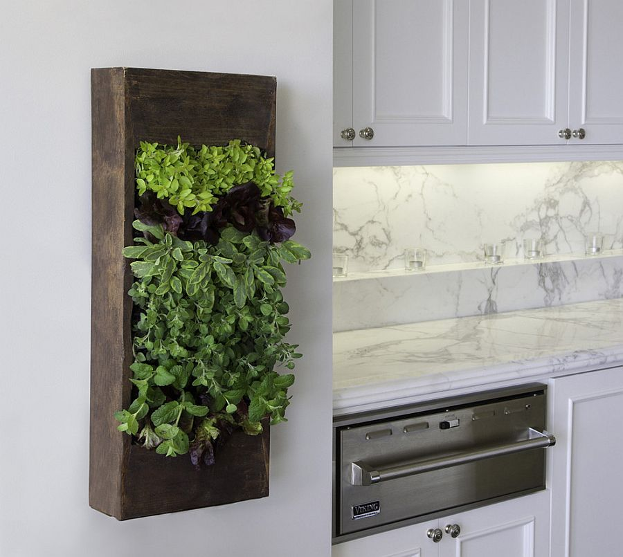 Small herb garden in the kitchen also doubles as an aesthetic addition [Design: Bright Green]