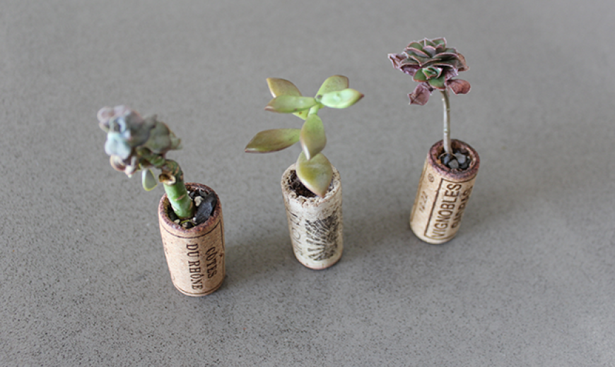 DIY: How to Make Adorable Recycled Wine Cork Planters for Under $10