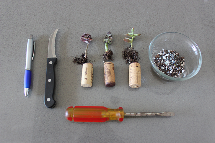 Supplies for wine cork planter DIY