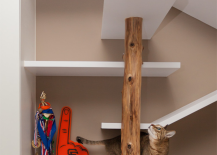 Taiwanese apartment with climbing shelves for cat