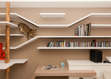 Taiwanese apartment with special cat-friendly climbing shelves