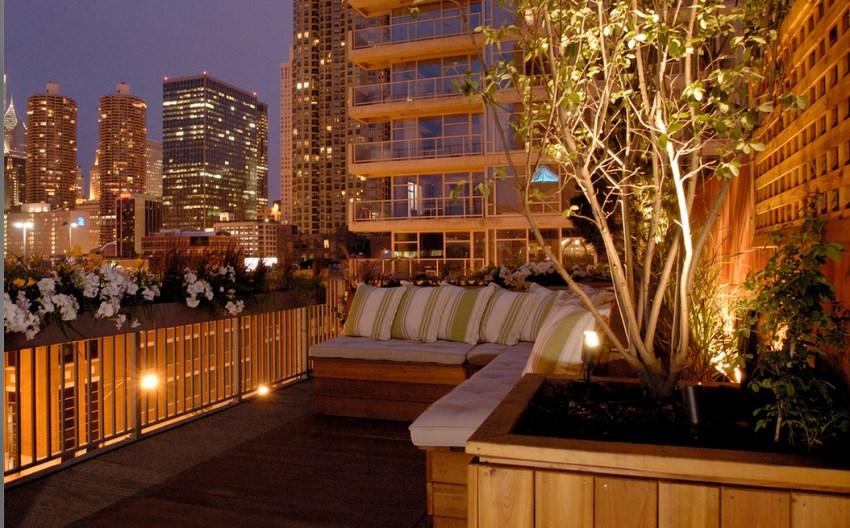 Tree lighting on a rooftop lounge
