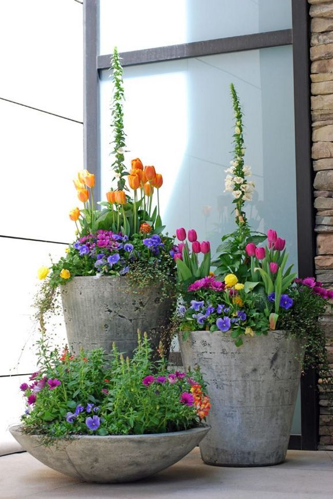 Trio of pots by a front entrance