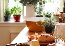Turn-to-small-planters-for-a-simple-indoor-herb-garden-217x155