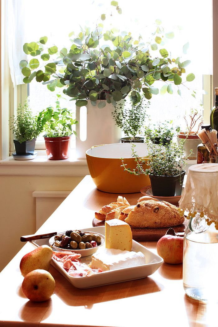 Turn to small planters for a simple indoor herb garden [Design: Moment Design + Productions]