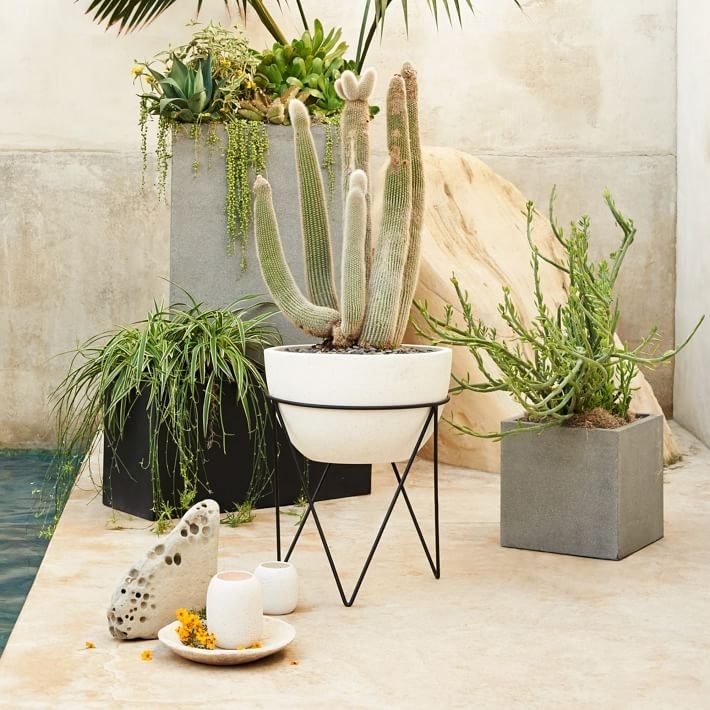 Variety of planters from West Elm