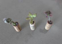 Wine Cork Succulent Planter 217x155 DIY: How to Make Adorable Recycled Wine Cork Planters for Under $10