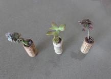 Wine-Cork-Succulent-Planter-217x155