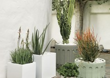 embossed planters from CB2