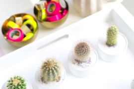 Cactus party favors from Studio DIY  Summer Party Ideas for a Festive Season Cactus party favors from Studio DIY