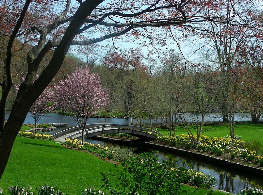 Captivating landscape with natural creek and a garden bridge [Design: Benedek & Ticehurst]
