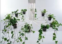 Chandelier-planter-Modern-217x155