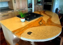 Concrete and Petrified Wood Countertop design