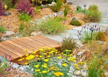 Even the tiniest of bridges can make a big impact! [Design: Sage Ecological Landscapes and Nursery]