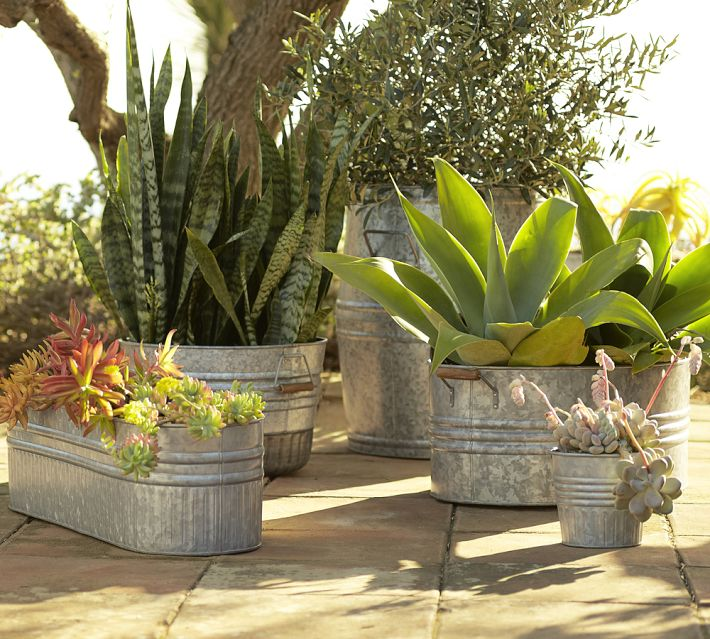With a collection of planters, vary heights and shapes of plants