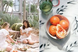 Greenhouse picnic from Design Love Fest  Picnic Ideas: Style Tips for a Relaxed Outdoor Meal Greenhouse picnic from Design Love Fest 270x180