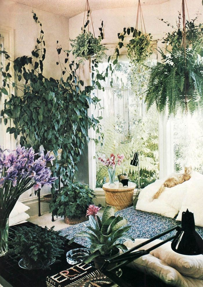 Light and airy plant-filled room