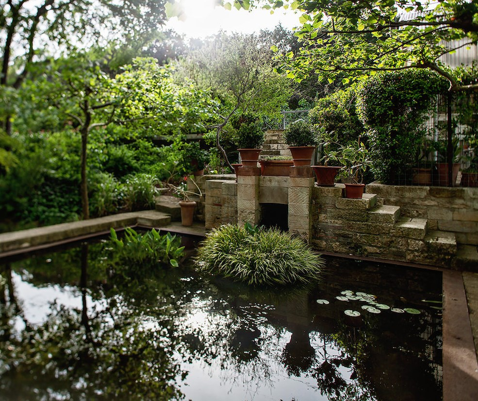 Lily pond in the garden of James David and Gary Peese