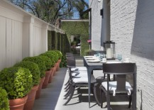Manicured greenery in an outdoor dining area