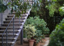 Potted-plants-at-the-Hotel-San-Jose-217x155