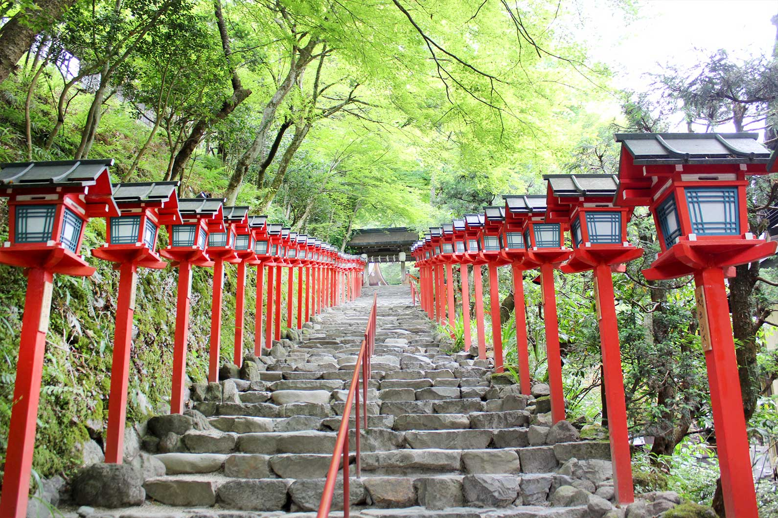 Red Lanterns Line the Walkway Up to Kifune Shrine