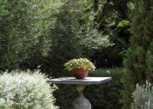 Sculptural eclectic container plant display