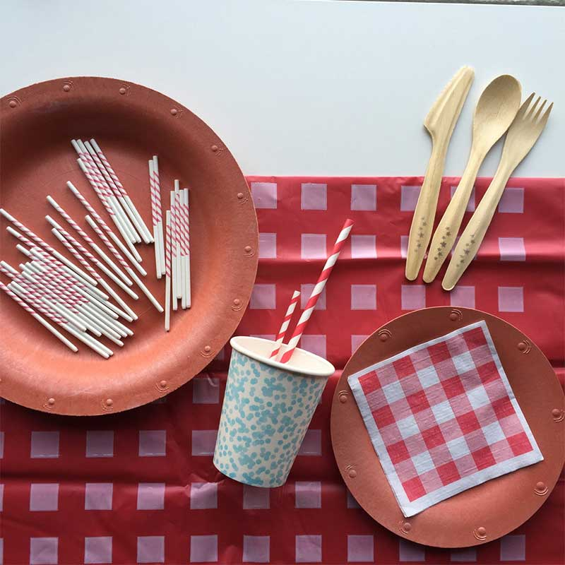 Susty Party 4th of July paper plates and cups