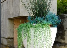 Vary-the-height-of-the-plants-in-your-container-garden-217x155