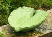 birdbath leaf 1