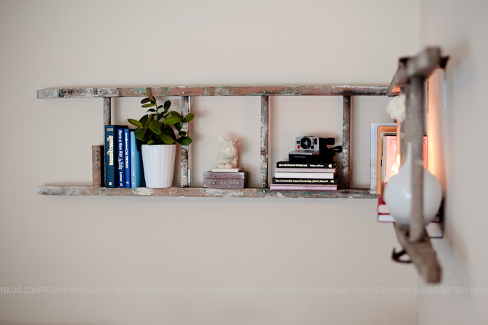 bookshelves ladder