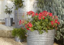 Smart, modern planters come in various shapes, sizes and materials