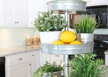 kitchen-tiered-tray-plants-fruit-217x155