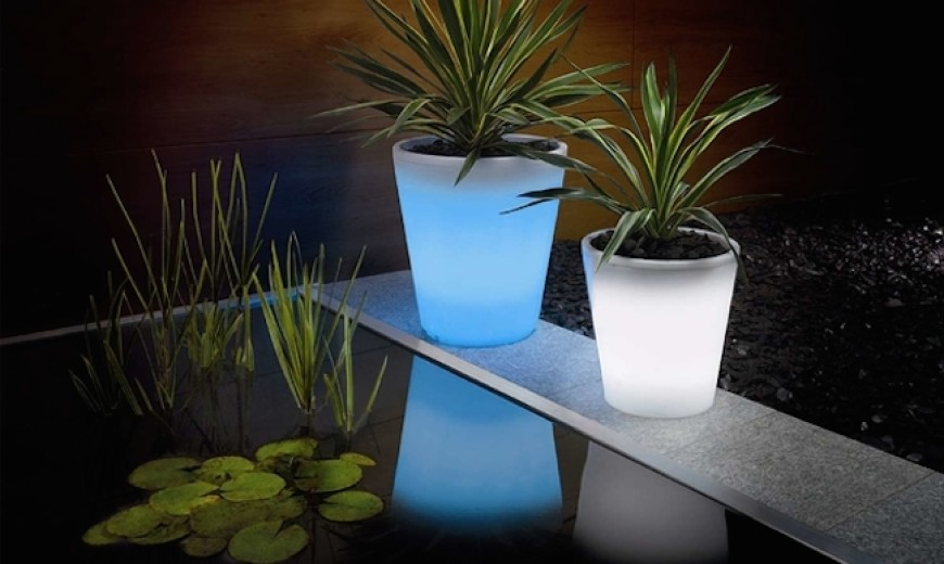 Solar-Powered Decorative Ideas to Light Up Your Yard