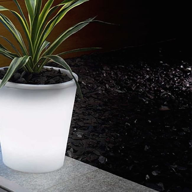 Decoist & Solar-Powered Decorative Ideas to Light Up Your Yard
