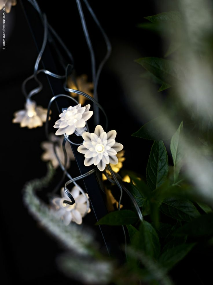 solar-powered white flower lights