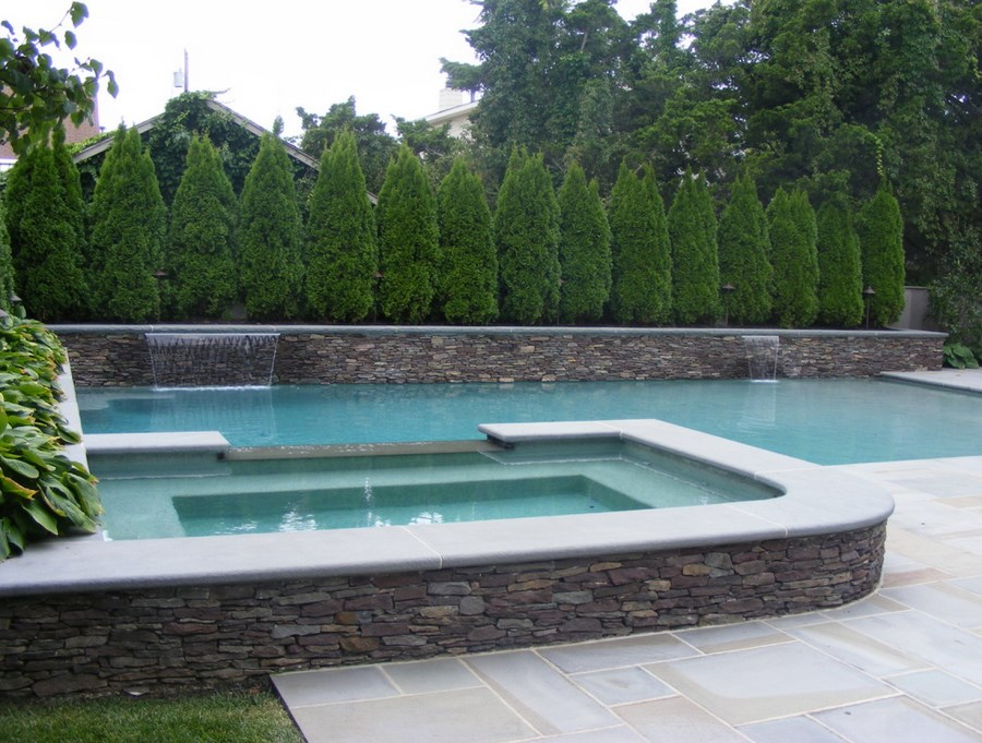 Pool Privacy Screen 10 privacy plants for screening your yard in style