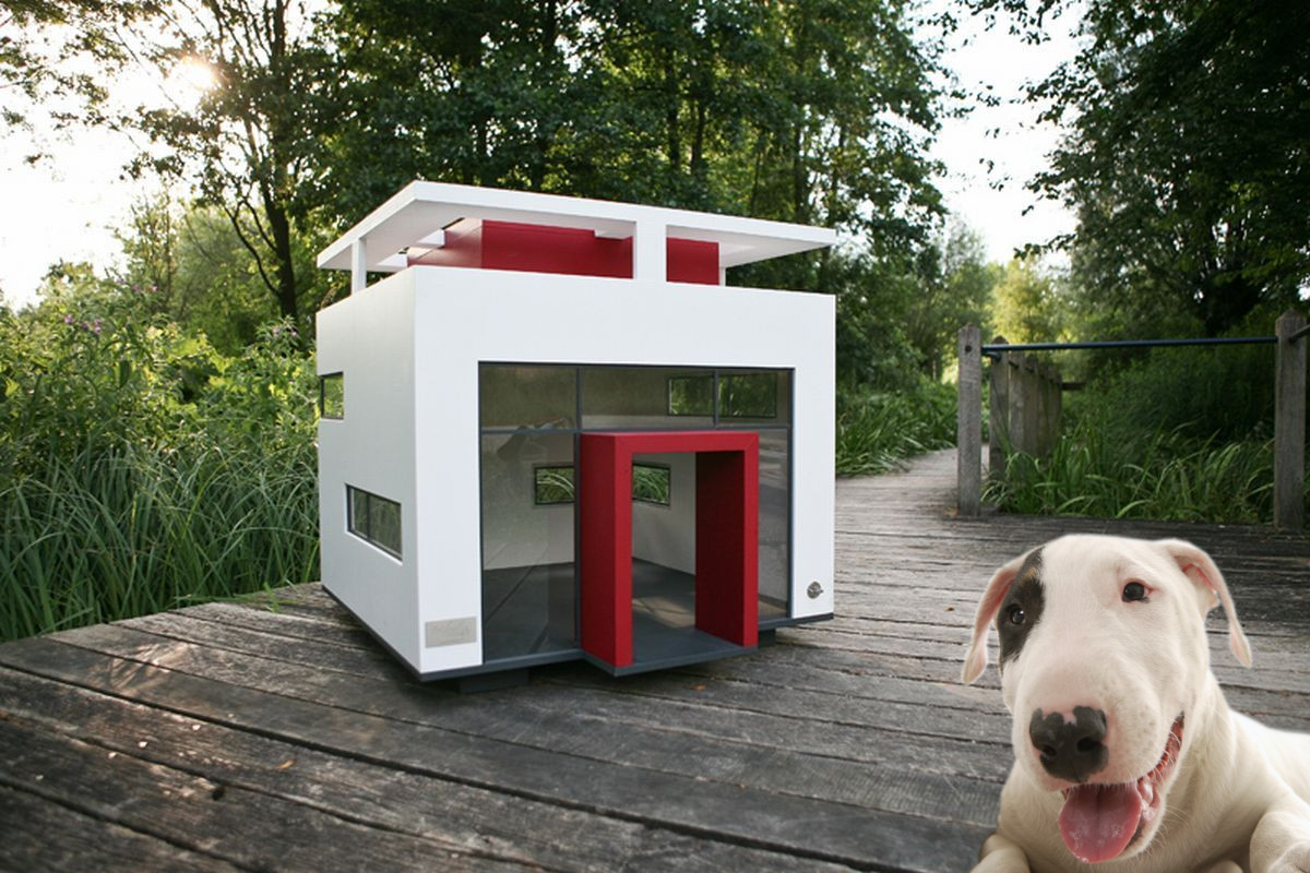 This doghouse is for a very special dog!