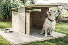13 Inspiring Ideas to Build Your Own Dog House