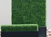 Faux-boxwood-hedges-from-Hooks-and-Lattice-217x155