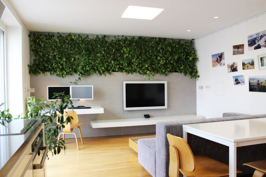 Home office with a vertical wall of plants