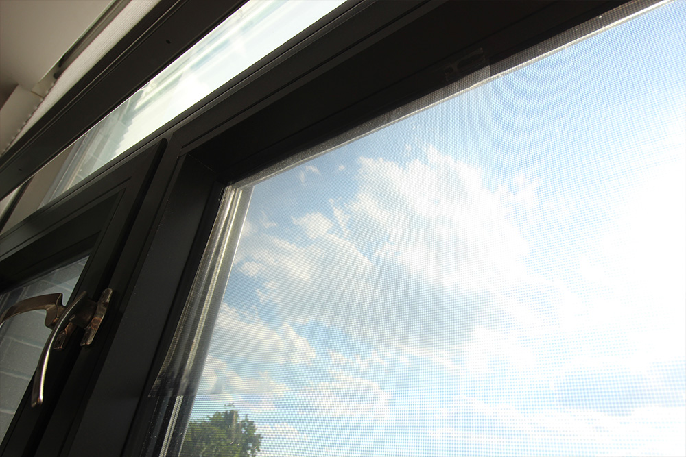 How to Turn Your Window into a Giant Picture Frame Taped Window