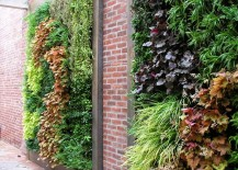 Living walls filled with perennials 217x155 Modern Hydroponic Systems for the Home and Garden