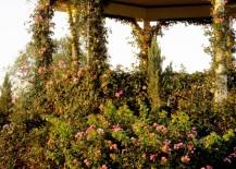 Lovely-gazebo-with-climbing-vines-217x155