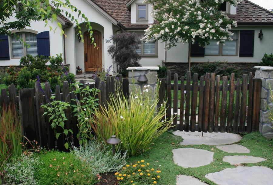 Fast Growing Shade Trees That Make A Statement